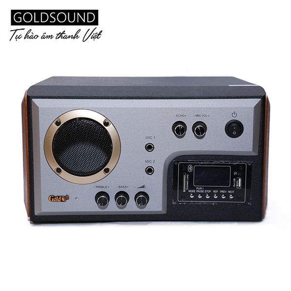 Amply 300w Gold4cafe - Bluetooth, Micro.
