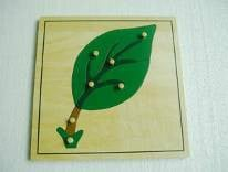 Leaf Puzzle (PLYWOOD --- NEW)