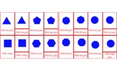 Polygons 3-Part Cards