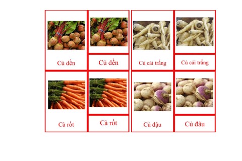 Root Vegetables Picture Cards
