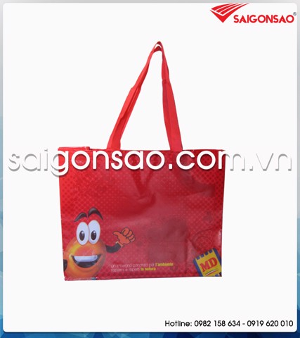 Shopping bags (túi shopping)-002