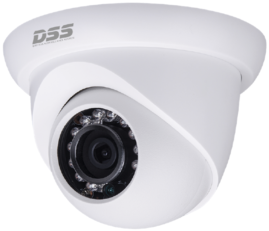 CAMERA IP DS2300DIP