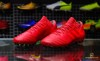 adidas Nemeziz 17.3 AG Cold Blooded - Real Coral