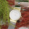 SKAGEN LADIES WATCHES - SK87