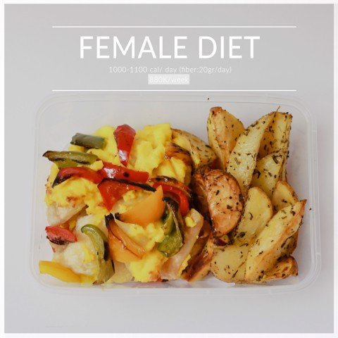 Female diet 2 meals/day