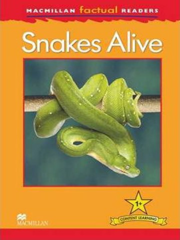 Macmillan Factual Readers 1+: Snakes Alive