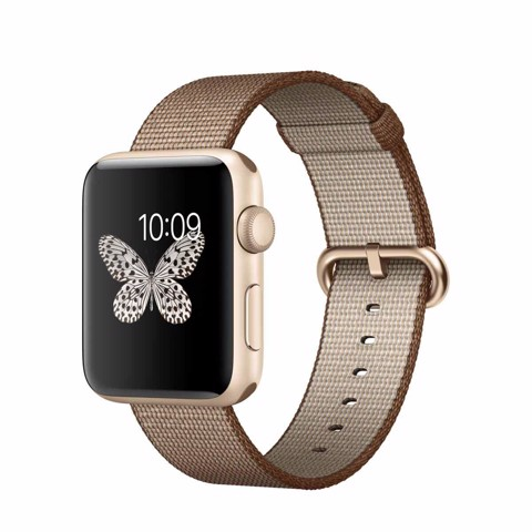 Dây Dù Apple Watch Chính Hãng 42mm Tosted Coffee Woven Nylon