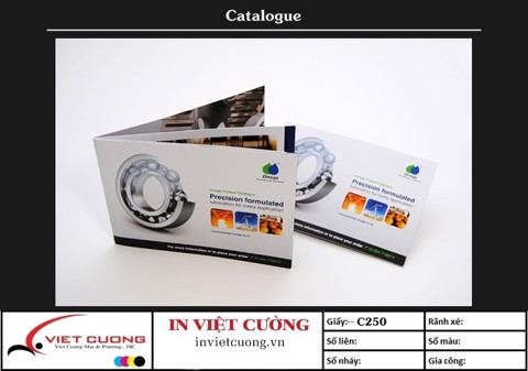 In catalogue mẫu 9