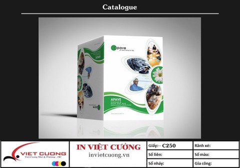 In catalogue mẫu 7