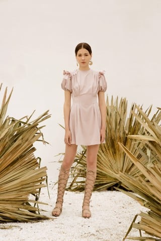 Rose Beige Dress