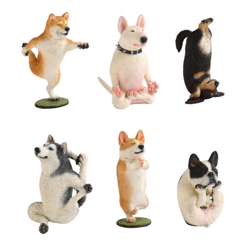 ANIMAL LIFE - Dog Yoga Master 6Pack BOX