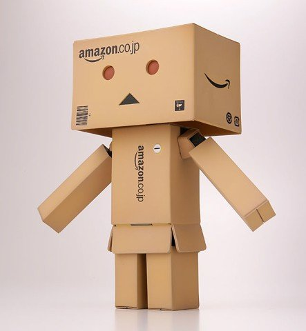 Revoltech Danbo Amazon Box Version