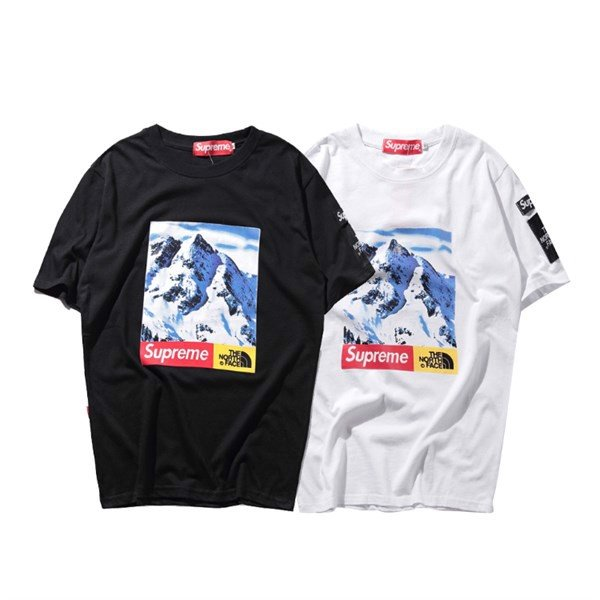 SUPREME X THE NORTH FACE T-shirt
