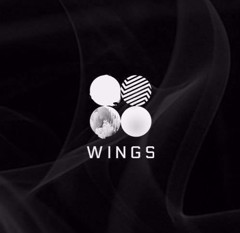 bts vol 2 wings chon ver