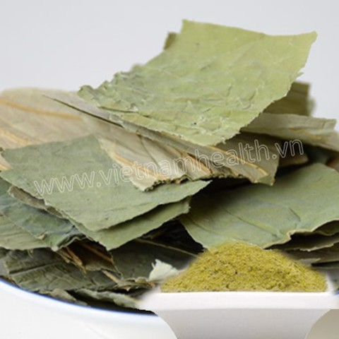 Lotus Leaf Extract Powder