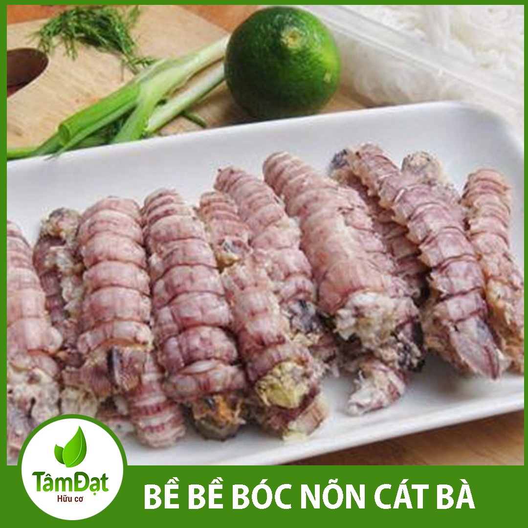 be be boc non cat ba