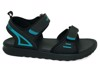 SD-NB33 Black T.Blue
