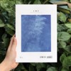 J.O.Y - Issue 3: Những giấc mơ nở rộ (Inspiration for everyday life)