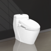 1001 one piece toilet