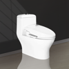 1020   one piece toilet