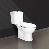V113 two pieces toilet