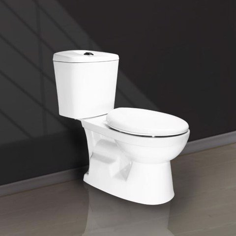 V116 two pieces toilet
