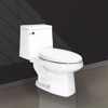 V118 two pieces toilet