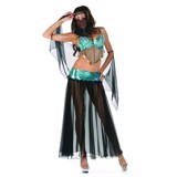 Belly Dancer Costume for Adults