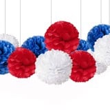[4th of July] Hoa tú cầu - Pom pom