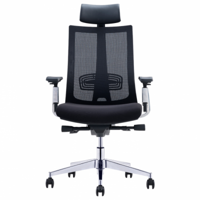 ERGONOMIC PRO CHAIR