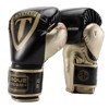 Găng Tay Torque 2.0 Boxing Gloves  - Black/Gold