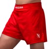 Quần Hayabusa Arrow Kickboxing Shorts - Red