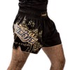 Quần Hayabusa Falcon Muay Thai Shorts - Black
