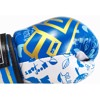 COMBO GĂNG TAY TRẺ EM MAX MTB NEW KIDS BOXING GLOVES - BLUE
