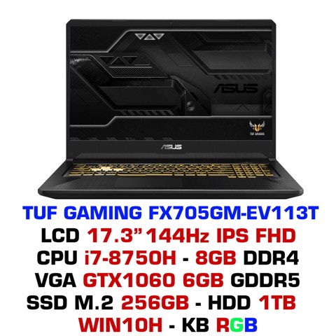 Laptop ASUS TUF Gaming FX705GM-EV113T