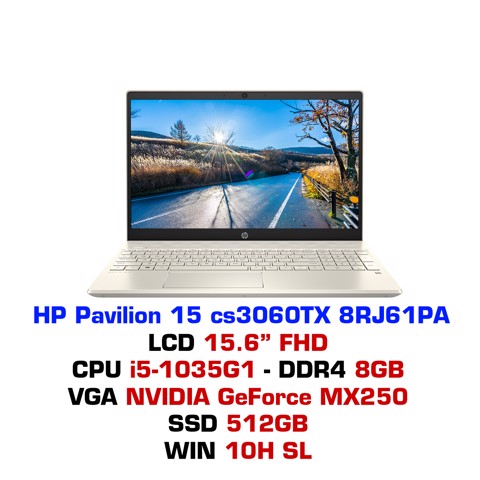 Laptop HP Pavilion 15 cs3060TX (8RJ61PA)