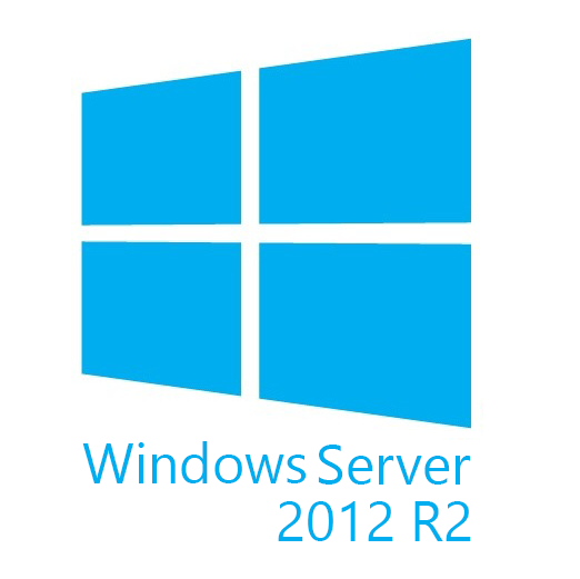 Windows Svr Std 2012 R2 x64 English 1pk DSP OEI DVD 2CPU/2VM (P73-06165)