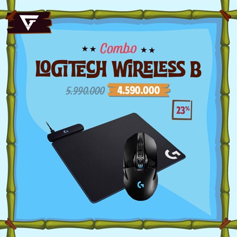 Combo Logitech Wireless B
