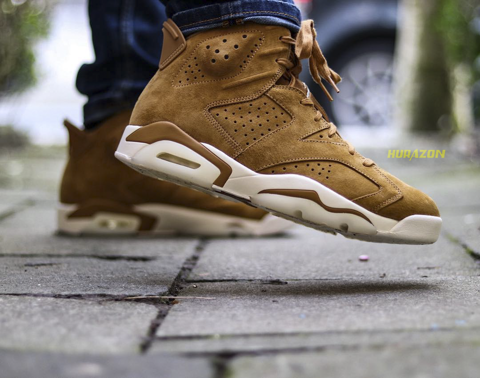 Jordan 6 Wheat JDS010