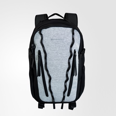 Quest AntiTheft Sterling Backpack