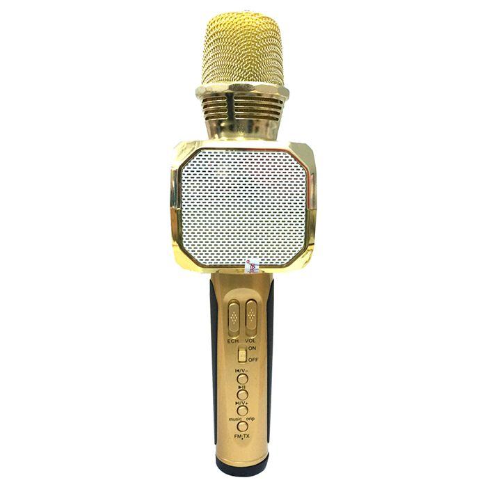 mic hát karaoke sd10