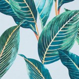 Best price 097 Tropical leaves