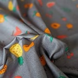 Best price 185 Tropical fruits on grey