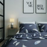 Best price 195 Colorful feathers on grey