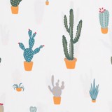 Pillow case 202 The cactus on cream