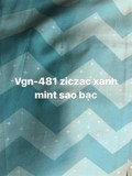 Pillow case 503 Mint zicac silver star