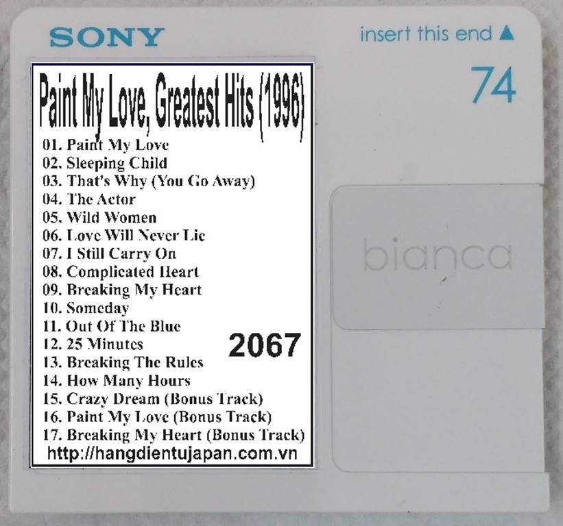 2067. Michael Learns To Rock - Paint My Love, Greatest Hits (1996)