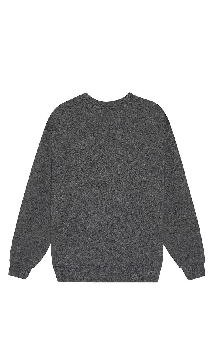 Champion Sweater In Grey