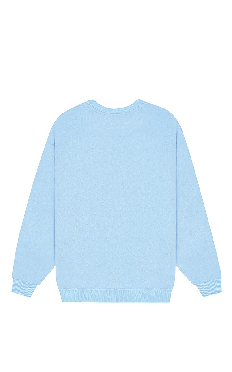 Champion Sweater In Blue