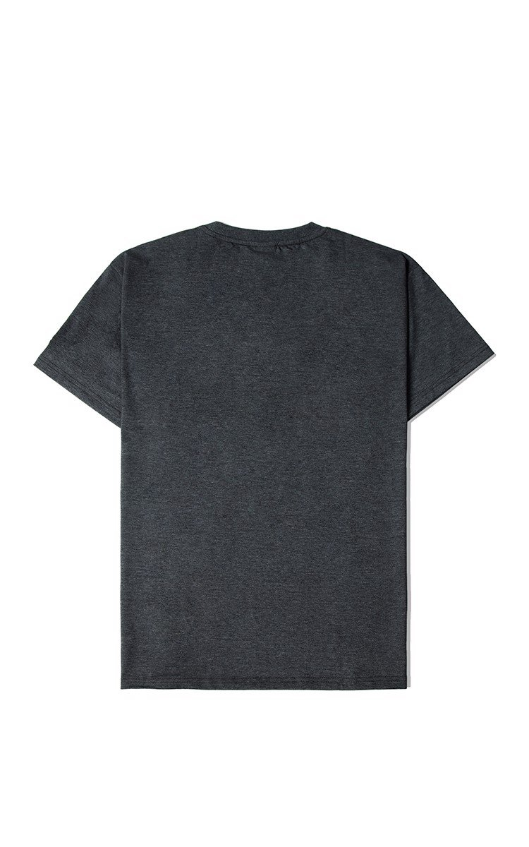 Champion T-Shirt In Grey